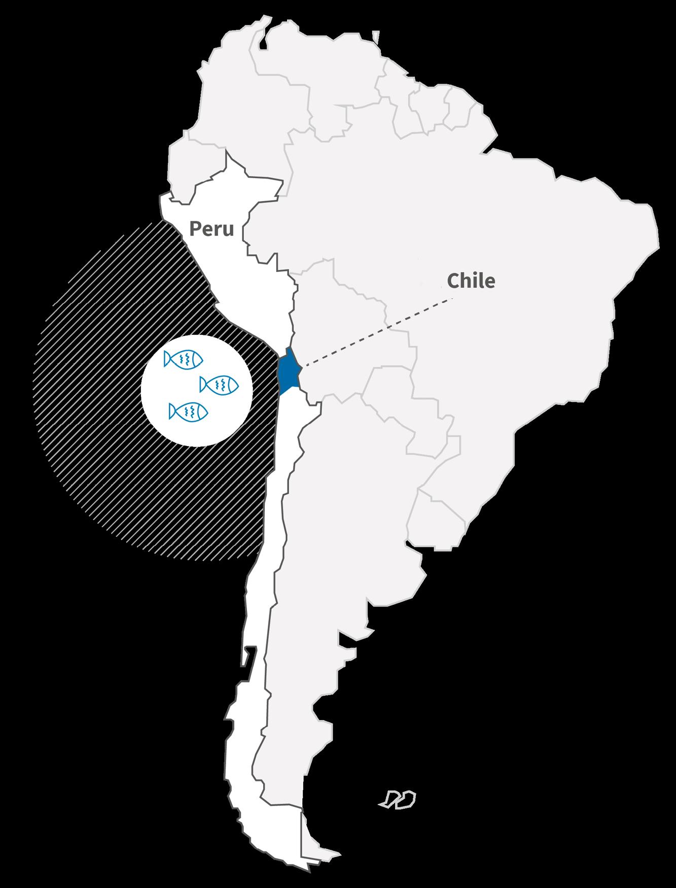 Südamerika-Karte: White Omega aus Chile