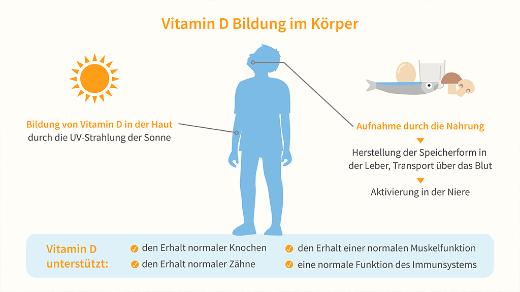 white-omega-blog-vitamin-d-infografik_Tiny-1