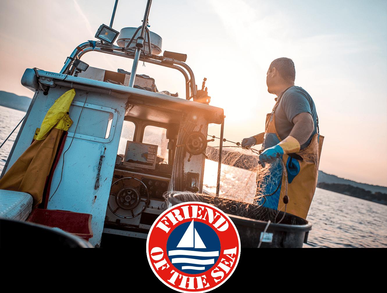 Friend of the Sea: Nachhaltiger Fischfang